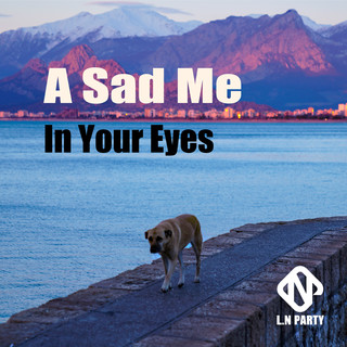 A Sad Me In Your Eyes