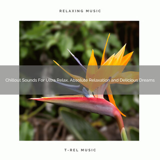 Chillout Sounds For Ultra Relax, Absolute Relaxation And Delicious Dreams