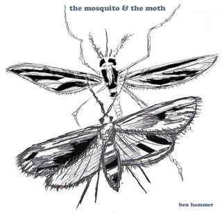 The Mosquito And The Moth