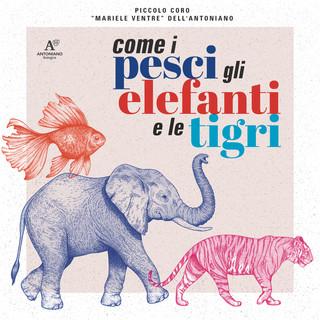 Come I Pesci, Gli Elefanti E Le Tigri
