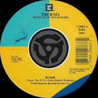 Roam (Edit) / Bushfire (Digital 45)