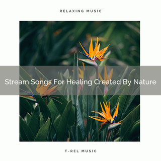 Stream Songs For Healing Created By Nature