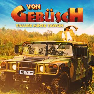 Von Gebüsch