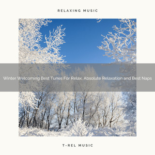 Winter Welcoming Best Tunes For Relax, Absolute Relaxation And Best Naps