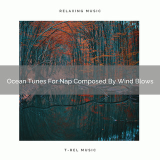 Ocean Tunes For Nap Composed By Wind Blows
