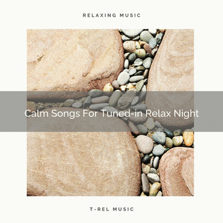 Calm Songs For Tuned - In Relax Night