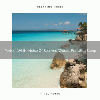 Perfect White Noise Of Sea And Woods For Ultra Sleep