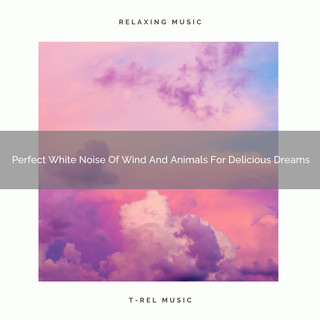 Perfect White Noise Of Wind And Animals For Delicious Dreams