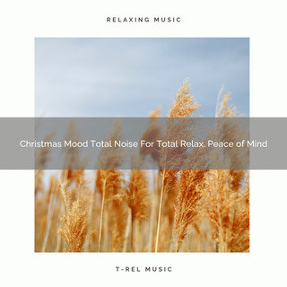 Christmas Mood Total Noise For Total Relax, Peace Of Mind