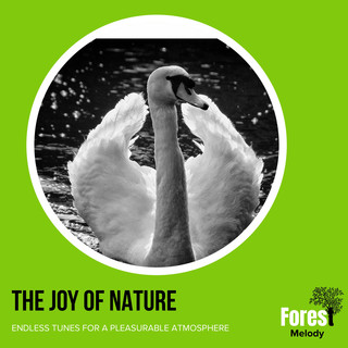 The Joy Of Nature - Endless Tunes For A Pleasurable Atmosphere