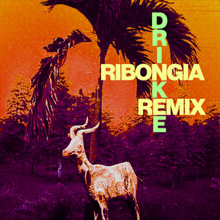 Drinkee (Ribongia Remix)
