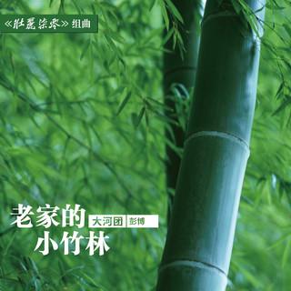 老家的小竹林