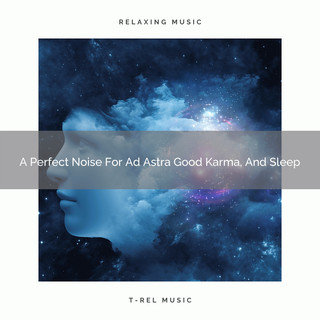 A Perfect Noise For Ad Astra Good Karma, And Sleep