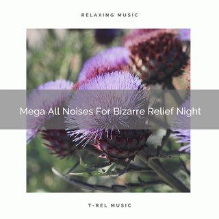 Mega All Noises For Bizarre Relief Night