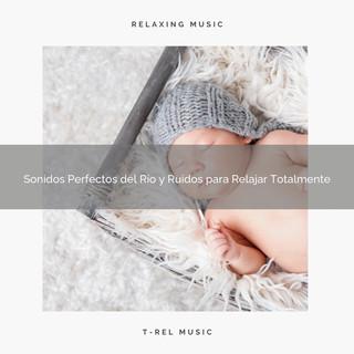 Sonidos Perfectos Del Río Y Ruidos Para Relajar Totalmente