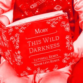 This Wild Darkness (Luttrell & Maor Levi Remixes)