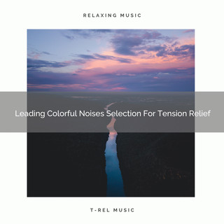 Leading Colorful Noises Selection For Tension Relief