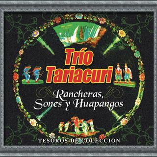 Tesoros De Coleccion - Trio Tariacuri