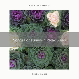 Songs For Tuned - In Relax Sleep