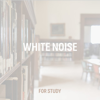 White Noise For Study
