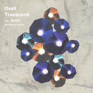 Transcend (feat. Armi) (Up Dharma Down)