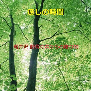 癒しの時間 ~軽井沢野鳥の森~ (小鳥のさえずりと小川のせせらぎ)現地収録 (Iyashi No Zikan Karuizawa -Birds Chirping and Stream- (Relax Sound))