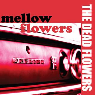 mellow flowers