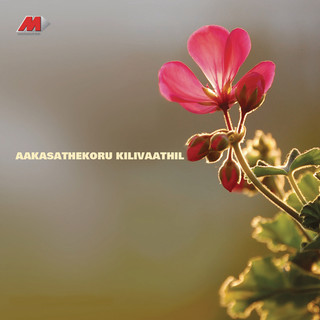 Aakasathekoru Kilivaathil (Original Motion Picture Soundtrack)