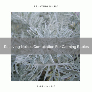 Relieving Noises Compilation For Calming Babies