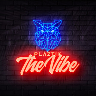 The Vibe (Extended Mix)