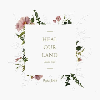 Heal Our Land(Radio Mix)