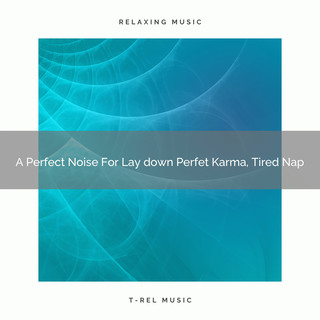 A Perfect Noise For Lay Down Perfet Karma, Tired Nap