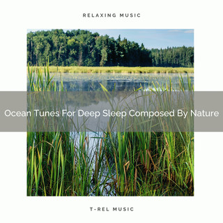 Ocean Tunes For Deep Sleep Composed By Nature