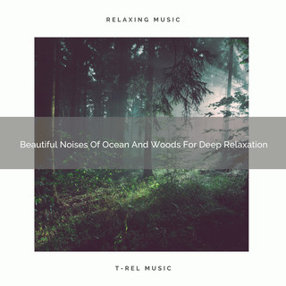 Beautiful Noises Of Ocean And Woods For Deep Relaxation