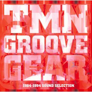 TMN GROOVE GEAR 1984 - 1994 SOUND SELECTION (ティーエムエヌグルーヴギアイチキュウハチヨンイチキュウキュウヨンサウンドセレクション)