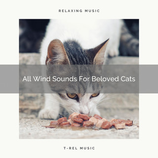 All Wind Sounds For Beloved Cats