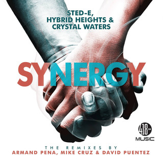 Synergy (The Remixes)
