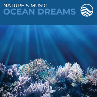 Nature & Music:Ocean Dreams