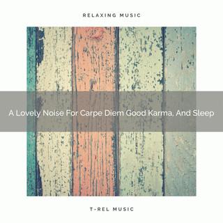 A Lovely Noise For Carpe Diem Good Karma, And Sleep