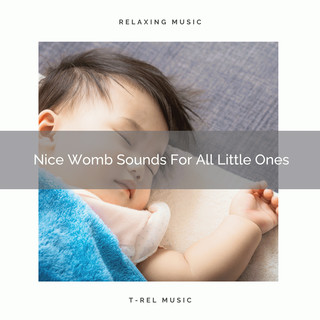 Nice Womb Sounds For All Little Ones