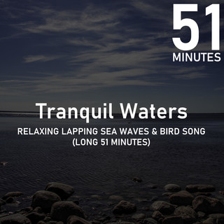 Relaxing Lapping Sea Waves & Bird Song (51 Minutes)