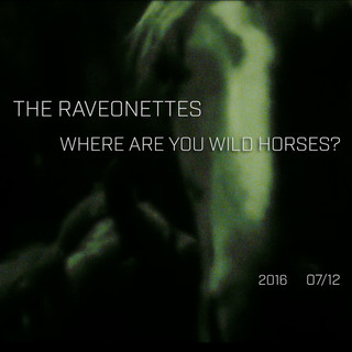 Where Are You Wild Horses