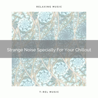 Strange Noise Specially For Your Chillout