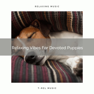 Relaxing Vibes For Devoted Puppies