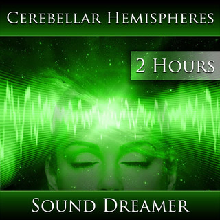 Cerebellar Hemispheres (2 Hours)