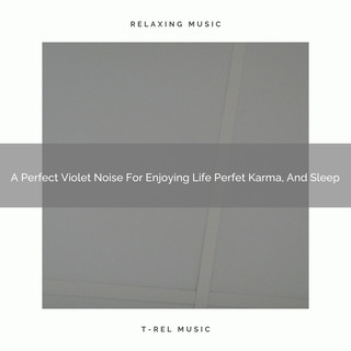 A Perfect Violet Noise For Enjoying Life Perfet Karma, And Sleep