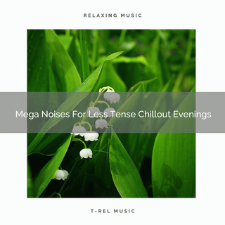 Mega Noises For Less Tense Chillout Evenings