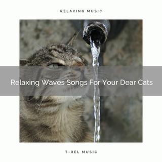 Relaxing Waves Songs For Your Dear Cats