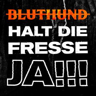 Halt Die Fresse Ja ! ! !