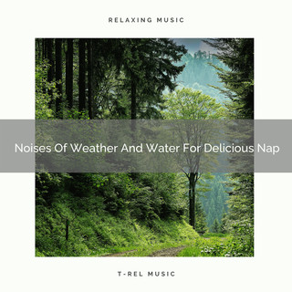 Noises Of Weather And Water For Delicious Nap